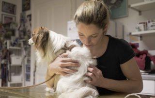 Tierarztpraxis Nussdorf Chiropraktik
