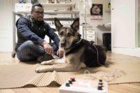 Tierarztpraxis Nussdorf Lenny