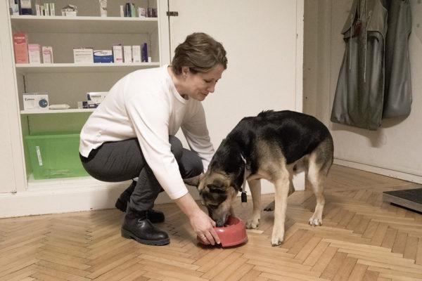 Tierarztpraxis Nussdorf Ernährungsberatung