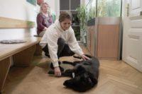 Tierarztpraxis Nussdorf